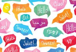 Профессиональные переводы и переводчики