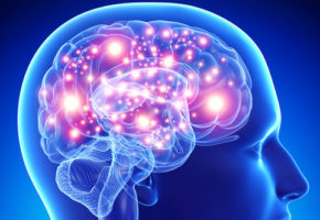Польза от изучения иностранных языков для мозга